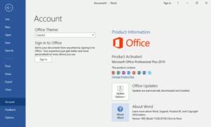 Windows 10 Pro plus office