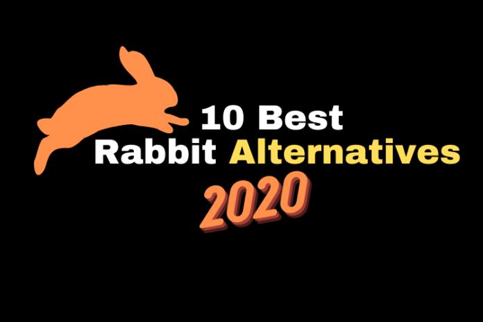 2020 BEST Rabbit Alternatives, rabbit alternatives, app similar to rabbit, abbit video sharing website, online video sharing platform like rabbit